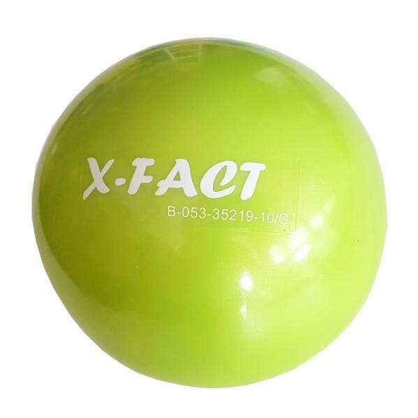X-Fact Toning Ball 2 kg
